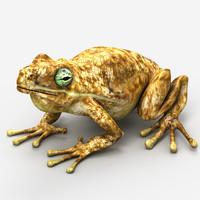 frog max