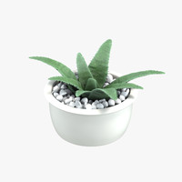 aloe pebble 3d max