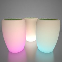 Illuminated Planter 3