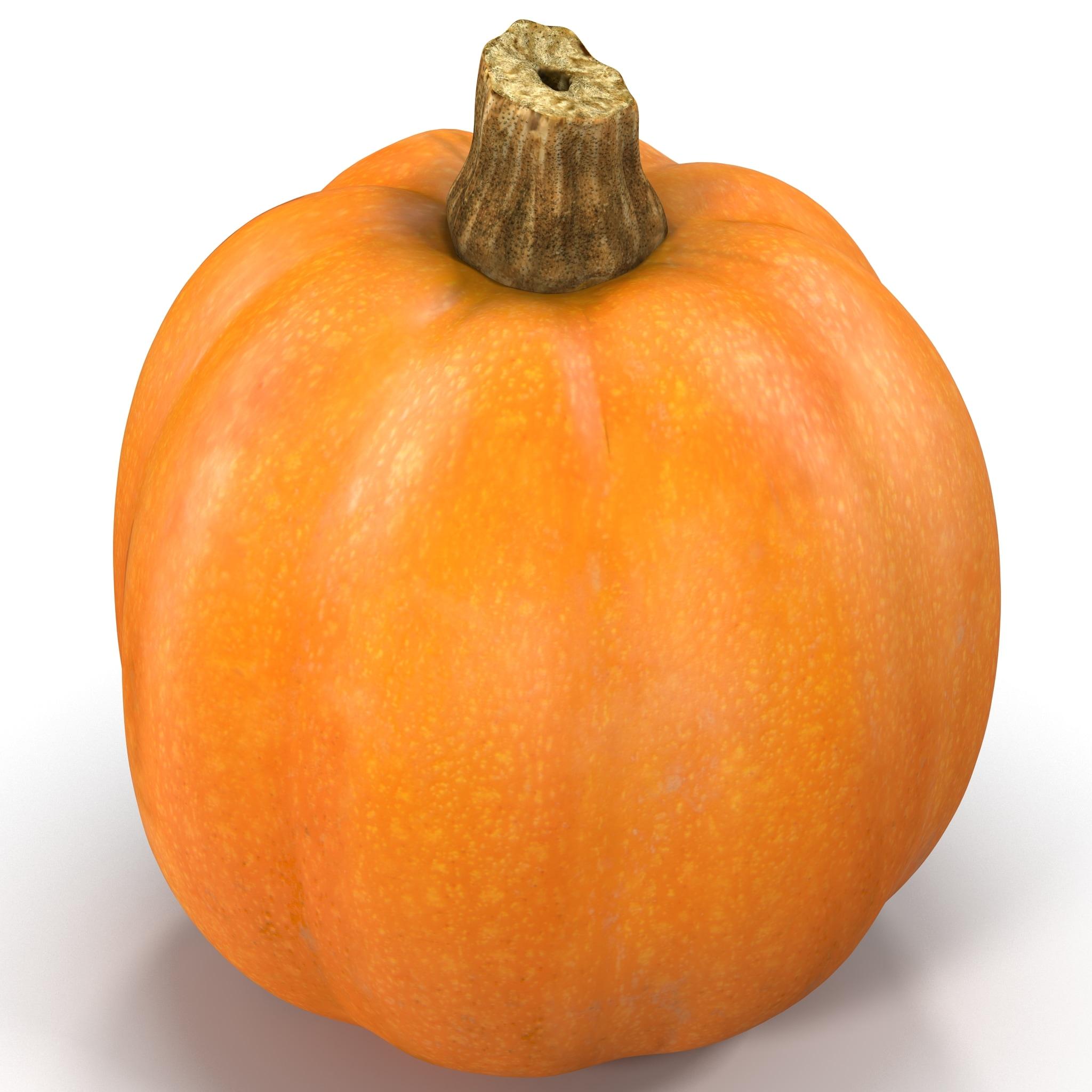 Pumpkin_01_001.jpg