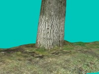 Tree Stump 3