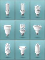 Light Bulb Set (10 Bulbs)
