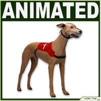 hound dog 3d model