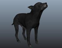 3d obj realistic dog