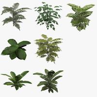 fbx ready plants