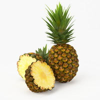 realistic pineapple real 3d model