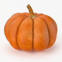 3d model of realistic pumpkin real