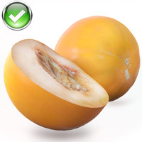 ma melon photorealistic scaned