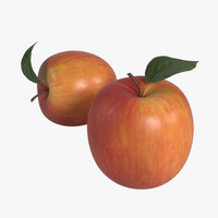 3d apple leaf realistic model