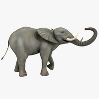 fbx elephant rigged