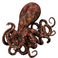 3d model octopus