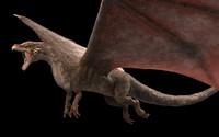 Dragon - for animation