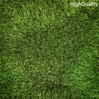 Low Poly Grass High Quality