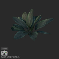 Plant low poly 01