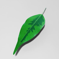 nature leaf 3ds