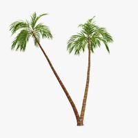 palm 08 3d 3ds