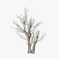 obj dead tree
