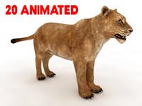 lion animate 3d c4d