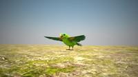 maya parrot