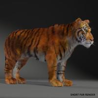 max realistical tiger