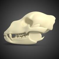 max skull bear
