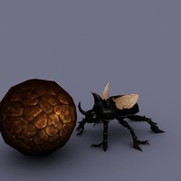 3d max beetle insect cartoon