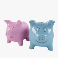 Pink and Blue Ceramic Piggy Bank