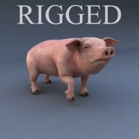 rigged pig animation 3d model