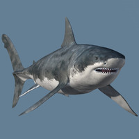 realistic female great white 3ds
