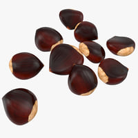 3d chestnut 2 1