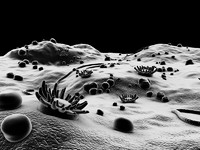 microscopic environment 3d model
