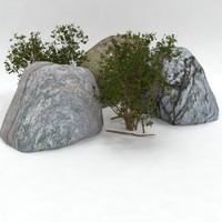 rock bush set 2 3d max
