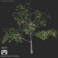 Low poly tree 03