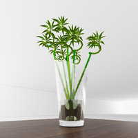 vase bamboo 3d max