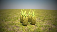 pineapples leaf 3d model
