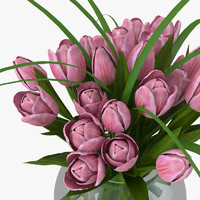 3d model tulips flowers plant