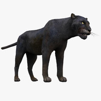3ds max leopard panther