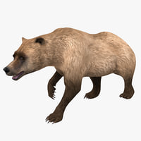 3d model of grizzly bear pose 2