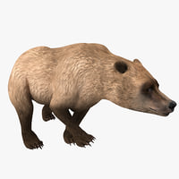 3d model of grizzly bear pose 4