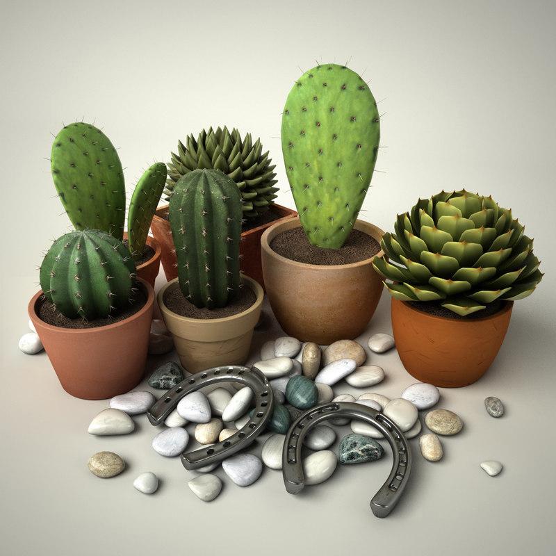 Cactus_Group_#1_Main2.jpg