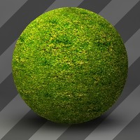 Grass Landscape Shader_020