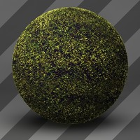 Grass Landscape Shader_024