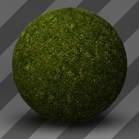 Grass Landscape Shader_028
