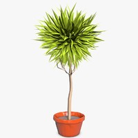 cinema4d cartoon plant style