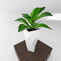 3d 3ds vase plant