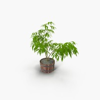 3ds max tree plant