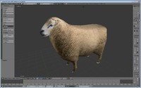 3d sheep games model