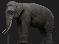 3d obj elephant