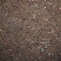 Ground #02 Texture