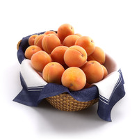 basket apricots hq 3d model